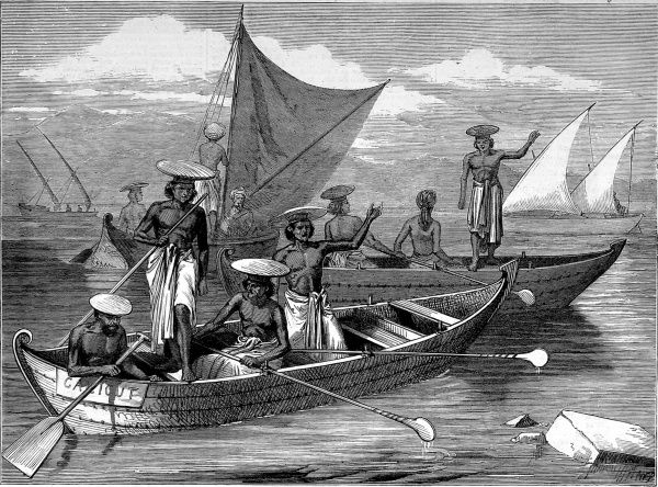 Engraving of several native oared vessels, one named the 'Calicut', as used on the Malabar Coast of India, circa 1877. In the background can be seen two, double masted, lanteen sailing dhows