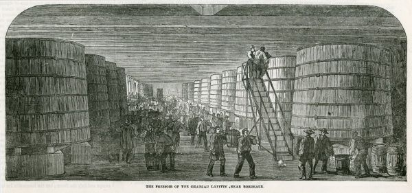Men bringing in barrels of grapes to be processed in the Pressoir of the Chateau Lafitte near Bordeaux