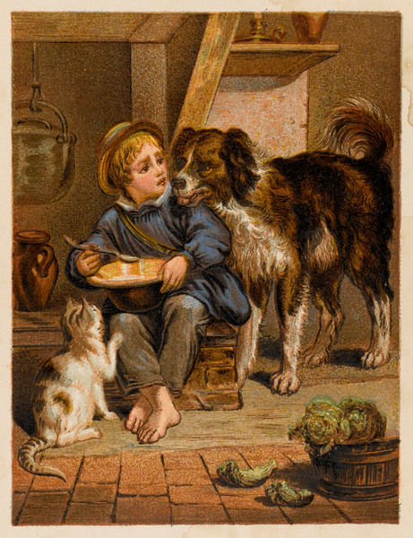 'My turn now' - a barefoot boy reluctantly shares his meal with his feline friend and canine chum