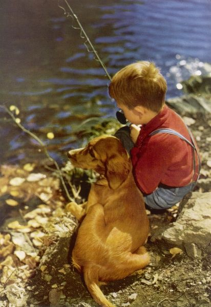 A little boy wearing dungarees fishes patiently, accompanied by his pet dog. Date: 1954