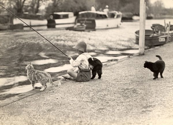 Charming photograph depicting a small boy fishing accompanied by some friendly cats at Beccles on the Norfolk Broads in East Anglia during the 1930s