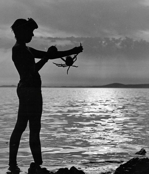 A boy wearing a diving mask stands silhouetted against the sea and sky, holding a crab