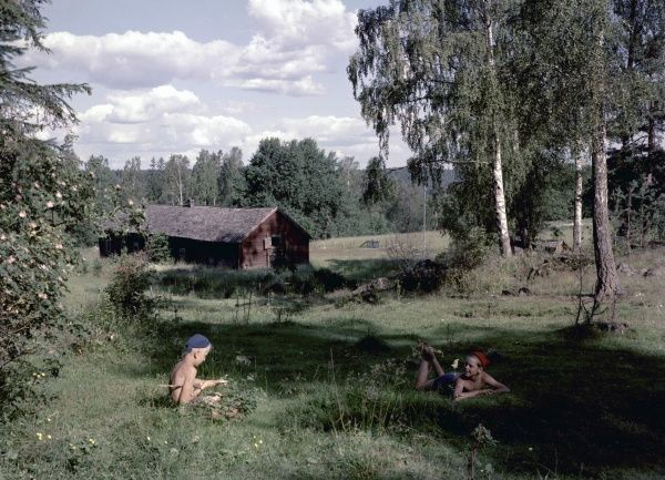 Two boys on the countryside during summer holidays, 1950s Date: 1950s