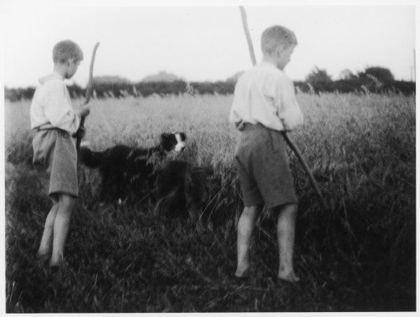 Two boys, and their black and white dog, watch and wait for rabbits in the field