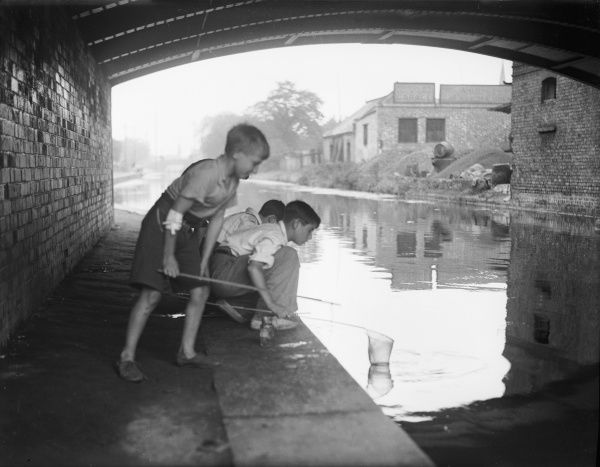 Boys fishing for tiddlers with a fishing net under a canal bridge
