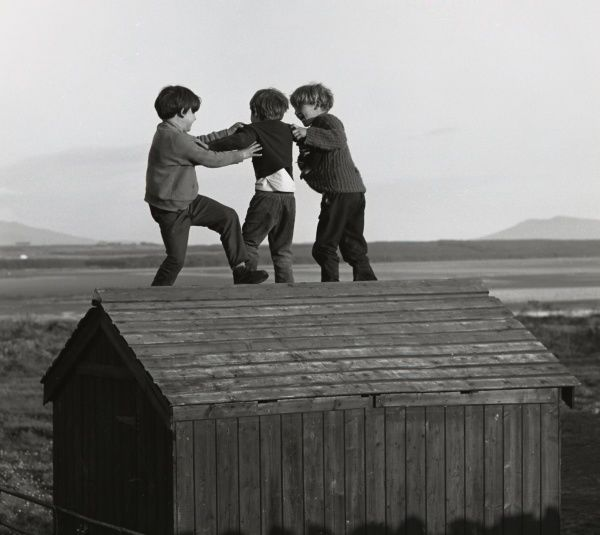 Three boys playing on top of a wooden shed in a rural area. They seem to be taking turns at jumping off the roof