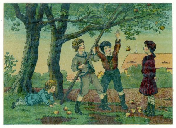 Two boys, use a long pole, to knock apples from a tree while a little girl makes ready to collect them. The elder girl seems unconvinced regarding the legality of scrumping