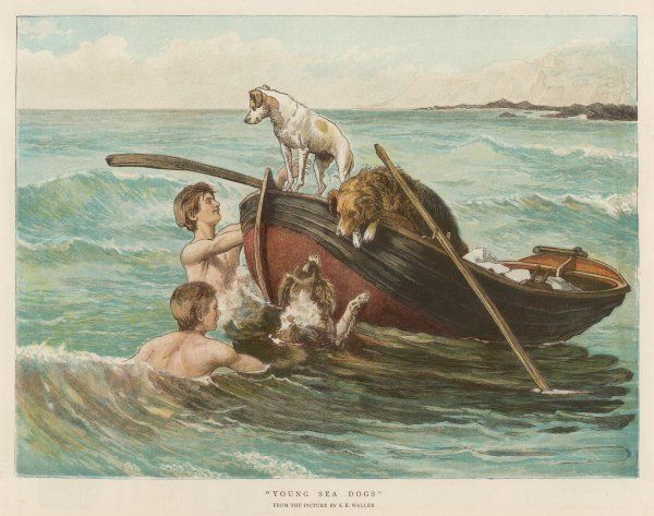 Two youths swim from a boat, but only one of their three dog companions is brave enough to join them in the water !
