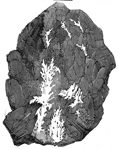 Engraving of rock quartz with fern like striations of gold running through it