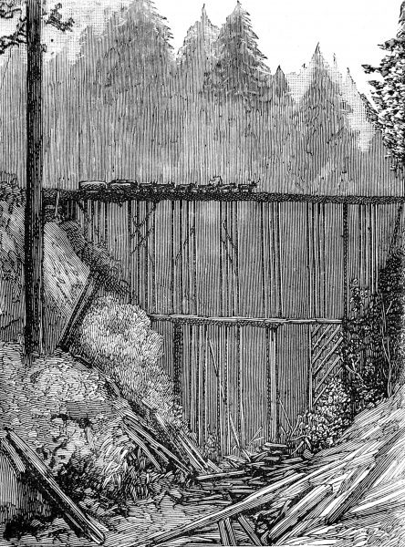 Engraving showing a deep gorge, with a spindly two tier bridge built across it, in the Redwoods, California, 1884. A wagon is pictured being pulled across the bridge