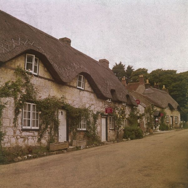 Lovely thatched cottages at Brightstone, Isle of Wight, England. Date: 1960s