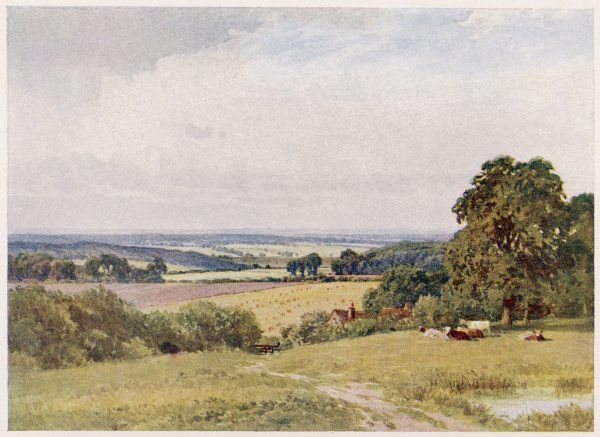 Buckinghamshire: view near Penn
