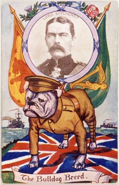 A patriotic bulldog with Lord Kitchener