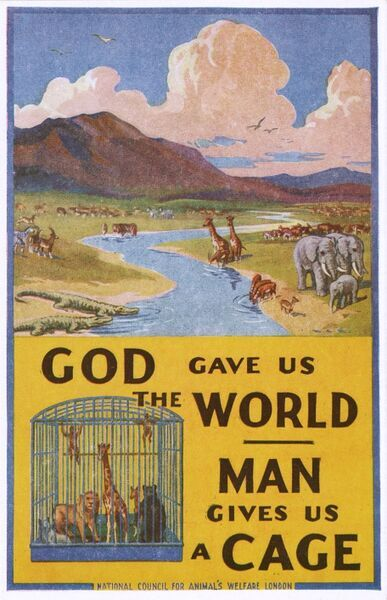 "A promotional card for the 'National Council for Animal's Welfare' of London. ""God gave us the World"" - ""Man gives us a CAGE"" Date: circa 1920s"