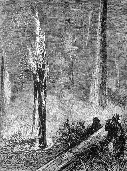 Engraving showing several men burning a clearing in the forest of California, perhaps to make space for housing or arable farming land