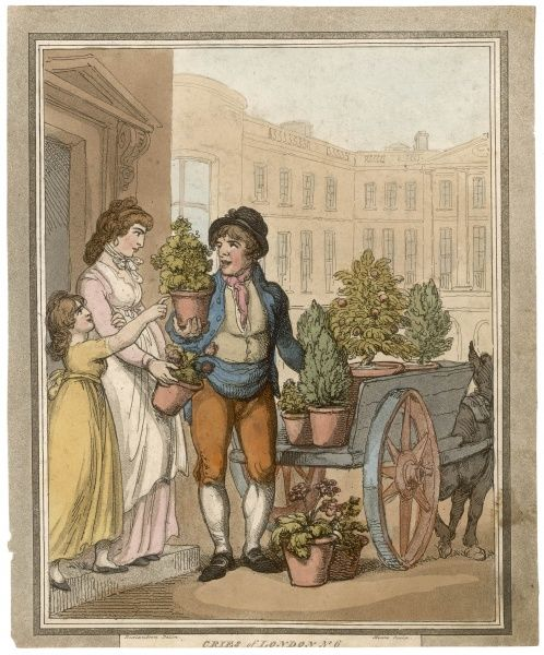 A trader with a donkey-cart sells potted plants in a London street : mama is doubtful, but her daughter enthuses