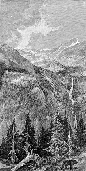 Engraving showing the mountains, waterfalls and forest of the California wilderness, 1888. A bear lumbers along in the foreground