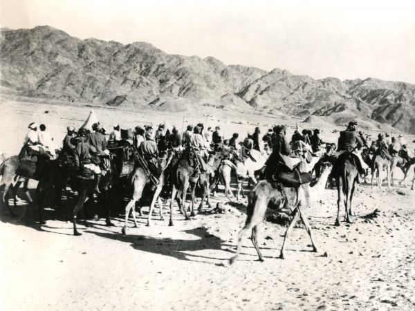 Camels and their riders in Mesopotamia (now Iraq), during the First World War. Date: 1914-1918