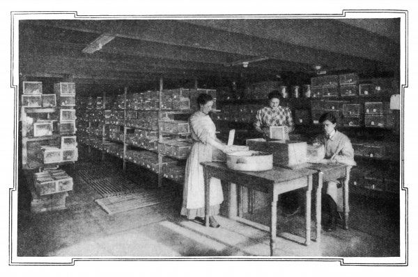 Cancer research at Gratwick Laboratory, Buffalo, New York, which achieved striking results with rats in 1909. Date: 1909