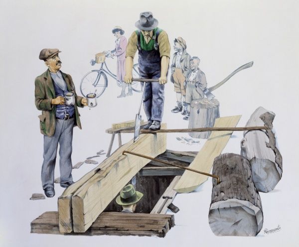 A team of carpenters use a long two-person saw to split a large trunk log into planks. Watercolour Painting by Malcolm Greensmith