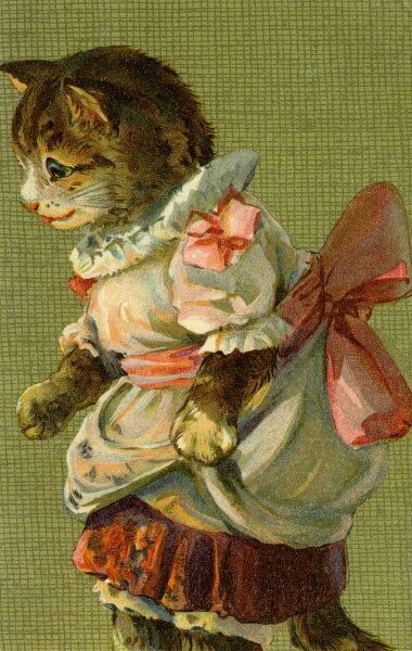Cat with pink bow by gh Thompson. George Henry Thompson (1859-1959) specialised in illustrating humorous animals. He was also a landscape painter. This image in books and postcards by Ernest Nister. Date: circa 1904