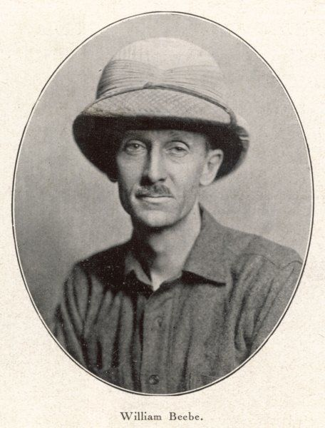 CHARLES WILLIAM BEEBE American naturalist and explorer