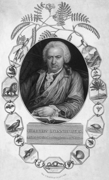 CHARLES BONNET Swiss naturalist and philosopher surrounded by a decorative border made up of plants and animals - 'the chain of nature&#39