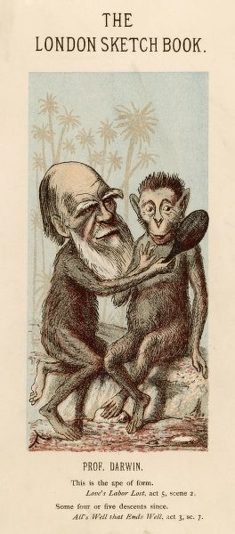 Charles Darwin holding up a hand mirror to an ape, showing how alike the pair of them are