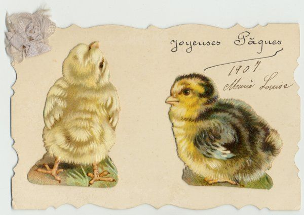 Two chick 'scraps' on a card