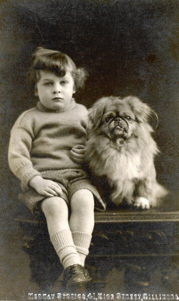 A child sits with his pekingese
