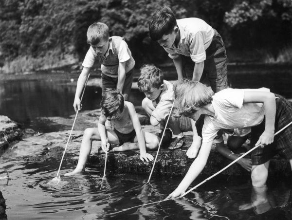 A group of children fishing in a stream with nets