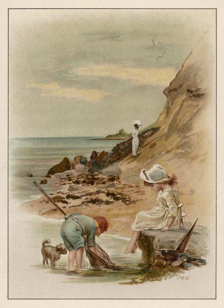 Two children fish in a rock pool for shrimps, while their dog looks on with interest