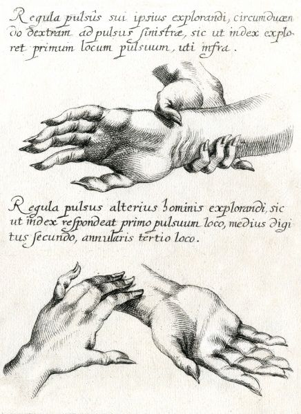 CHINESE THEORY OF PULSES Using the wrist-pulse of the human hand for healing purposes Date: circa 1680
