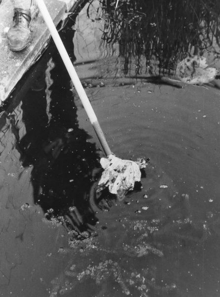Clearing debris from the surface of a garden pond with a rake. Date: 1960s