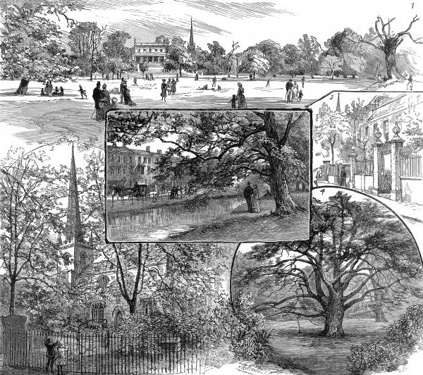 Engraving showing a series of scenes of Clissold Park and the surrounding area, 1885. The images show (clockwise from top): Horse-Shoe Field; Church Street; Old Yew Tree; the Old Church. The centre image shows Paradise Row and the New River