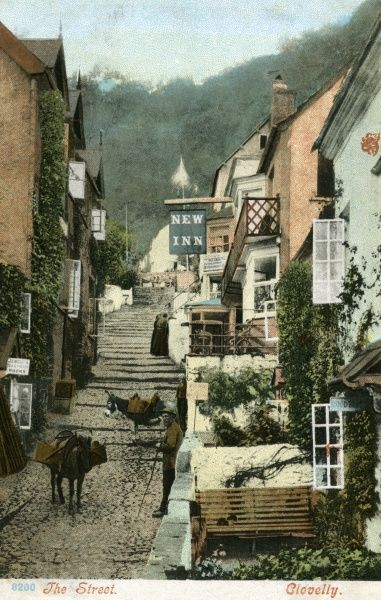 Clovelly, North Devon: the main street Date: 1904