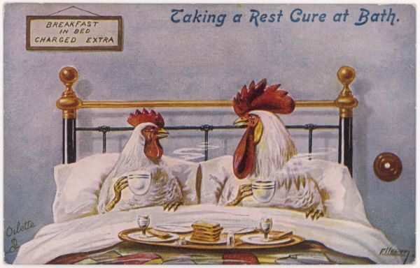 A cock and a hen breakfast in bed : their meal includes eggs, can they be cannibals ?
