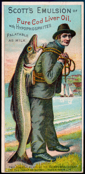 This advertisement for Scott's Emulsion of Cod Liver Oil features a codfish weighing 70.76 kg caught off the Norwegian coast