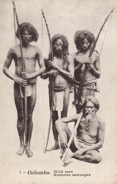 Survival International say that as of February 2010, there are less than 2000 surviving members of this Tribe - the Veddhas (also known as Wanniyala-Aetto or Forest People) - a Sri Lankan aboriginal group in direct descent from the Islands neolithic