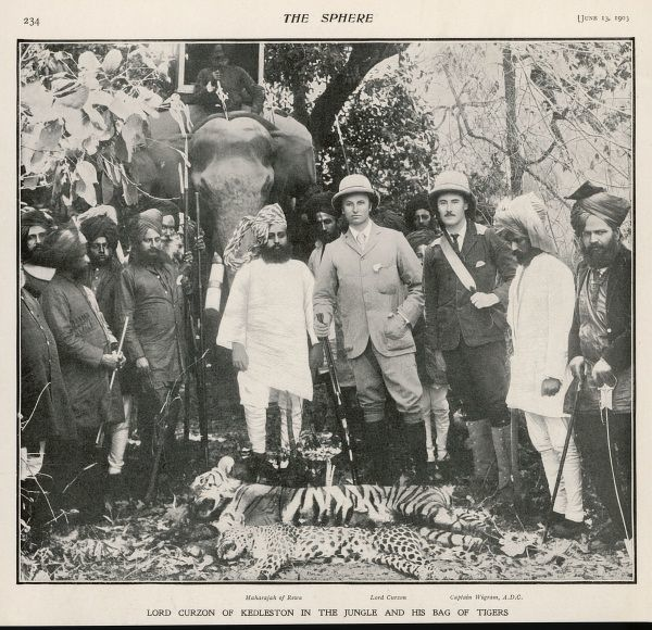 "GEORGE NATHANIEL, MARQUESS Lord Curzon of Kedleston with the Maharaja of Rewa and Captain Wigram ""in the jungle with his bag of tigers&quot"