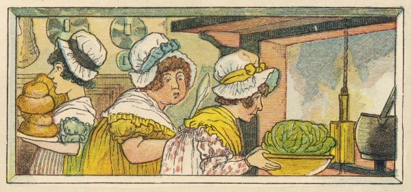 The cabbage is - or was once - the staple vegetable of English cuisine, and its cooking - whole - is an important part of any meal worthy of the name