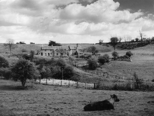 A Cotswold scene, near Chedworth, Gloucestershire, England, with some typical stone cottages. Date: 1960s