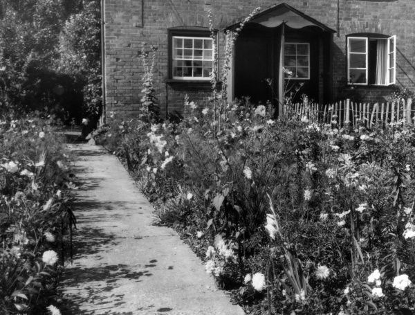A corner of a cottage garden at Emery Down in the New Forest, Hampshire, England, with its lovely borders, full of late summer flowers in bloom. Date: 1950s