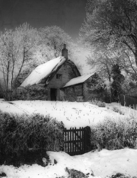 A cottage in the snow, Upper Harlestone, Northamptonshire, England. Date: early 1960s