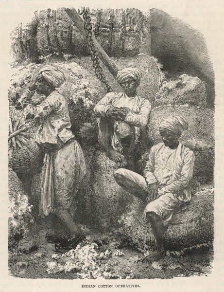 Cotton workers, India