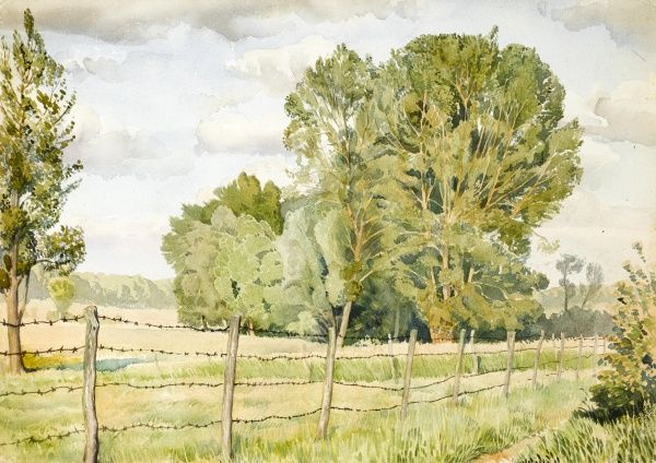A country scene with trees and fields