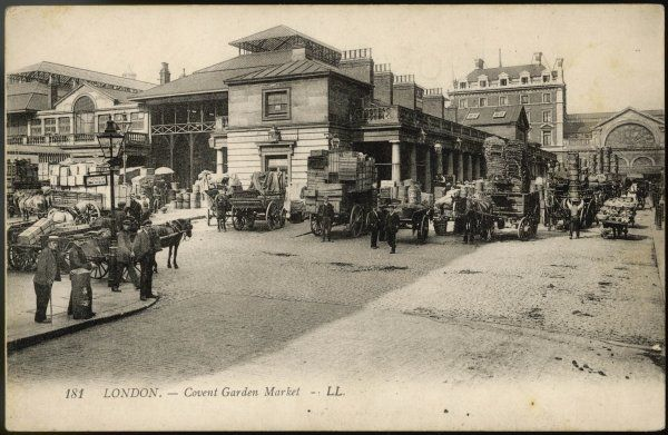 Covent Garden : horse-drawn carts and wagons arrive, piled high with fruit and vegetables for the dining tables of London