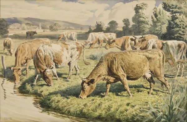 A herd of cows graze near a stream at the edge of a lush field. Watercolour painting by Raymond Sheppard