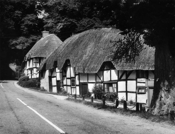 Deep thatched cottages at Wherwell, Hampshire, England. Date: 1950s