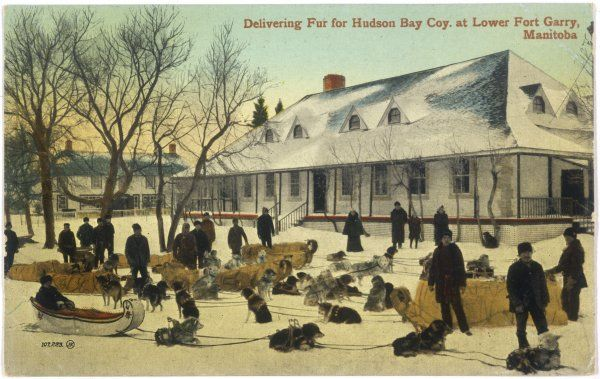 Delivering fur for the Hudson's Bay Company at Lower Fort Gary, Manitoba, Canada